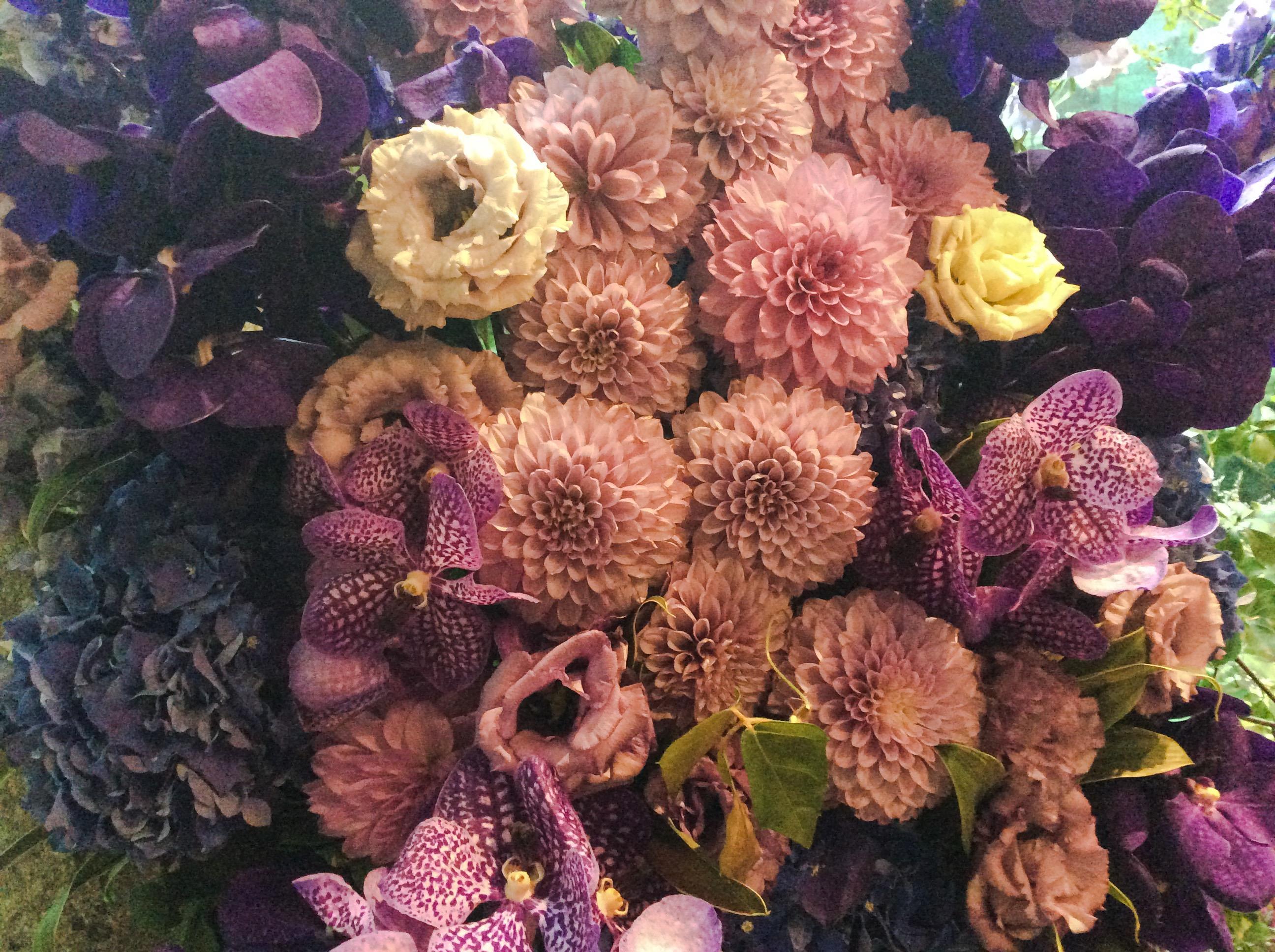 この世で一番美しい紫色、2月の誕生石アメシスト②